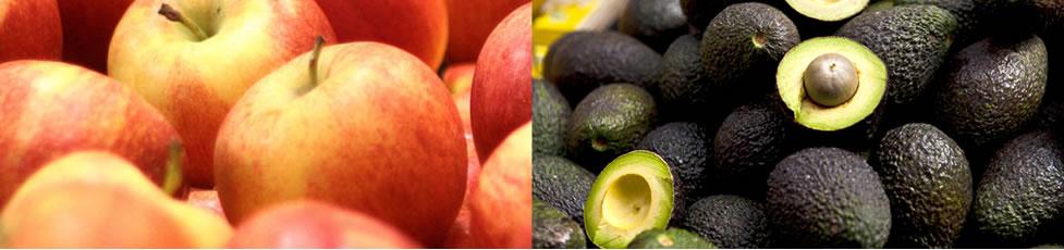 Cultivo de manzana y aguacate