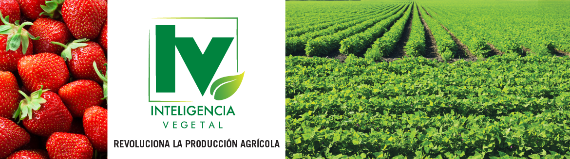Inteligencia Vegetal